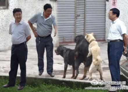 Фото прикол с левитирующими чиновниками (16)